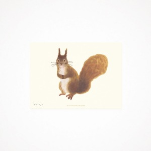 squirrel - drawing card